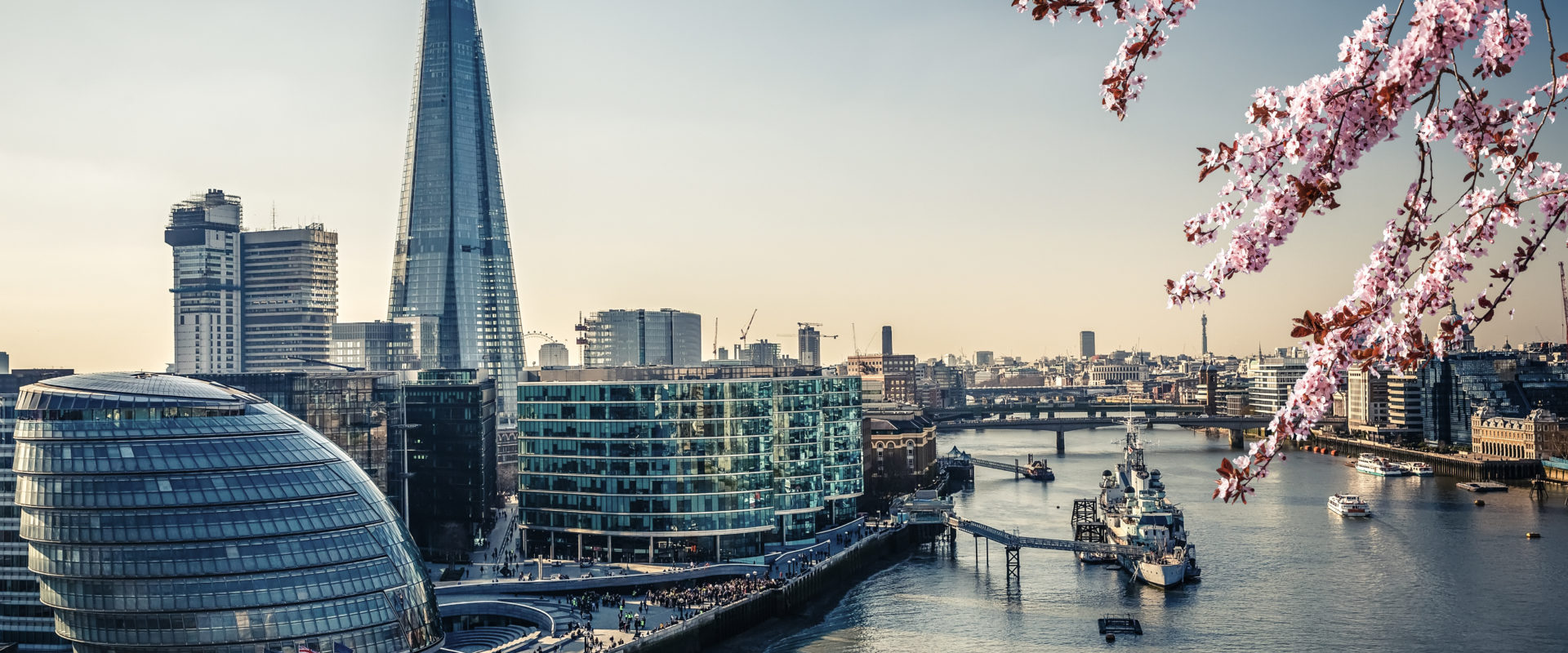 Stanton Chase welcomes New Director to London Office Cover Image