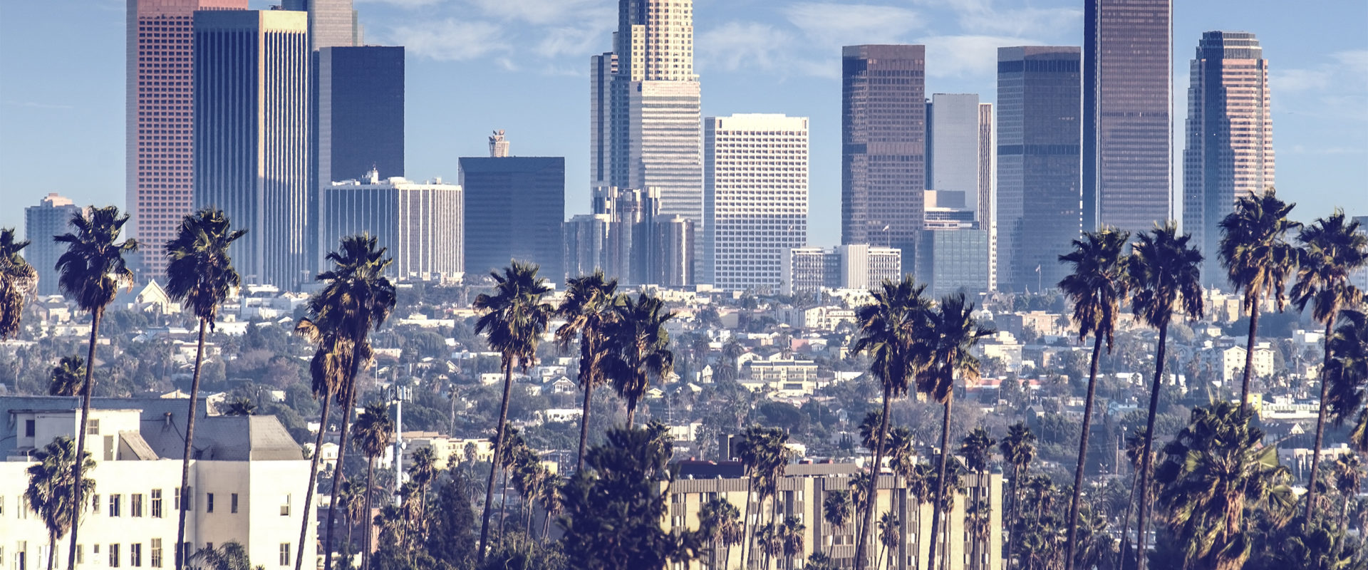 Stanton Chase Los Angeles Places Executive Leader at Seek Thermal Cover Image